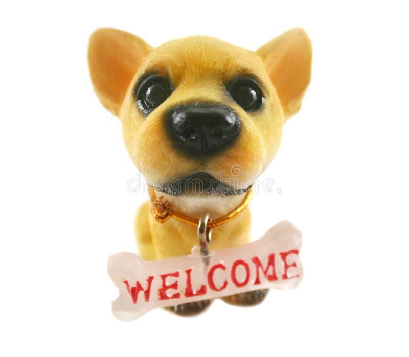 狗欢迎 库存照片