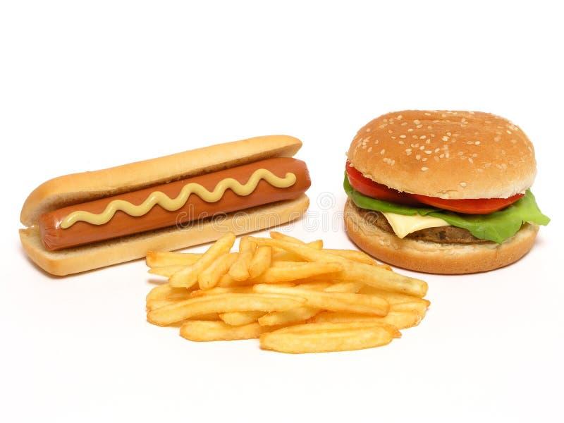 狗热炸薯条的汉堡包 免版税库存照片