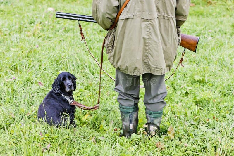 狗狩猎 免版税图库摄影