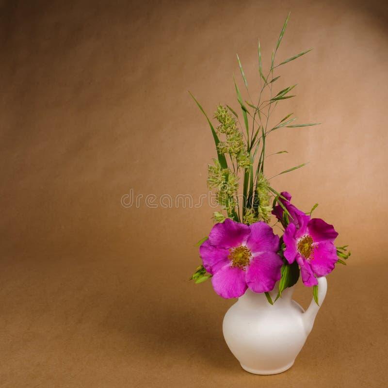 狗玫瑰和一些草地早熟禾花和叶子在一点白色陶瓷水罐在工艺纸背景  免版税库存图片