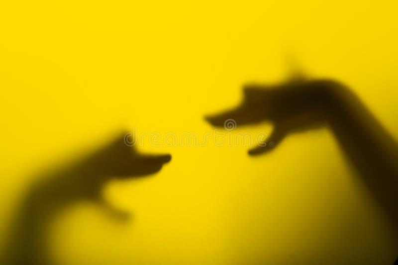 狗现有量朝向木偶s影子