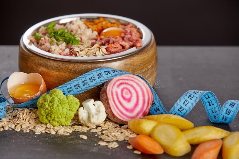 狗的未加工的食物节食概念 库存图片
