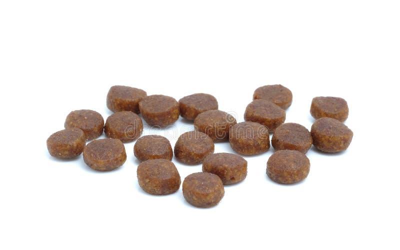 狗的饮食药片在白色背景 免版税图库摄影