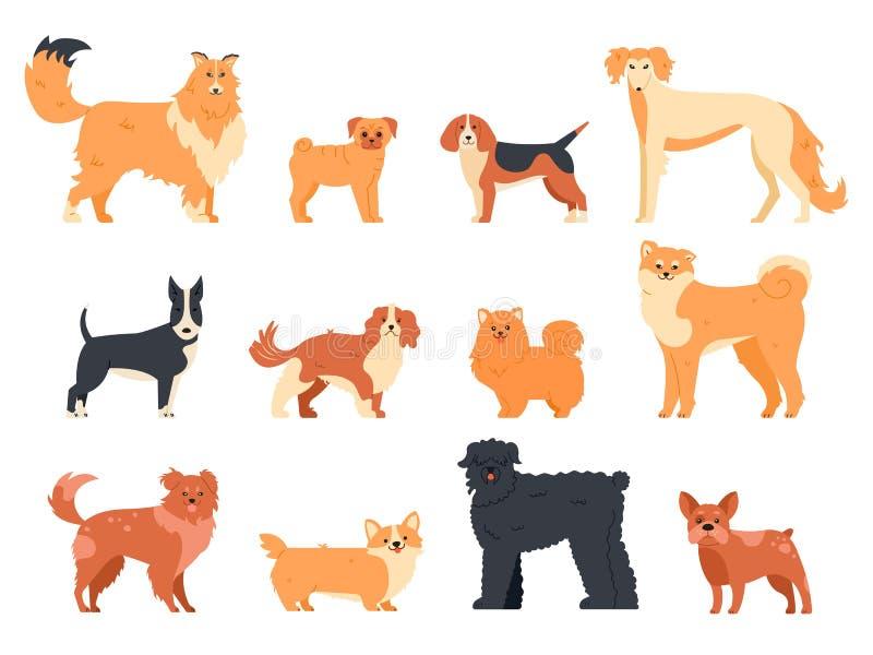 狗繁殖角色 纯种犬系谱、可爱的小狗狗、猎犬、威尔士犬和牛梗、滑稽的家养宠物 库存例证