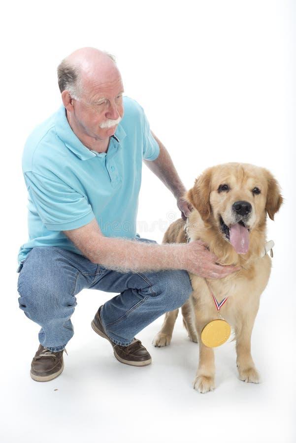 狗获得了一枚金黄奖牌 免版税库存图片