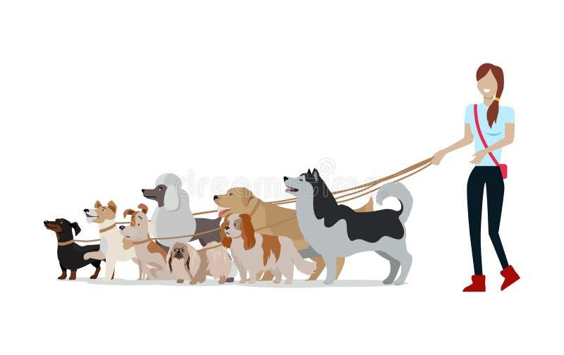 狗走的横幅 用不同的狗的妇女步行 向量例证