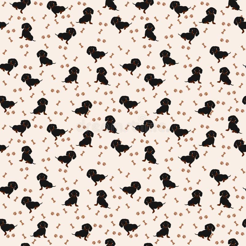 狗达克斯猎犬传染媒介无缝的样式 狗达克斯猎犬,骨头,爪子印刷品 向量例证