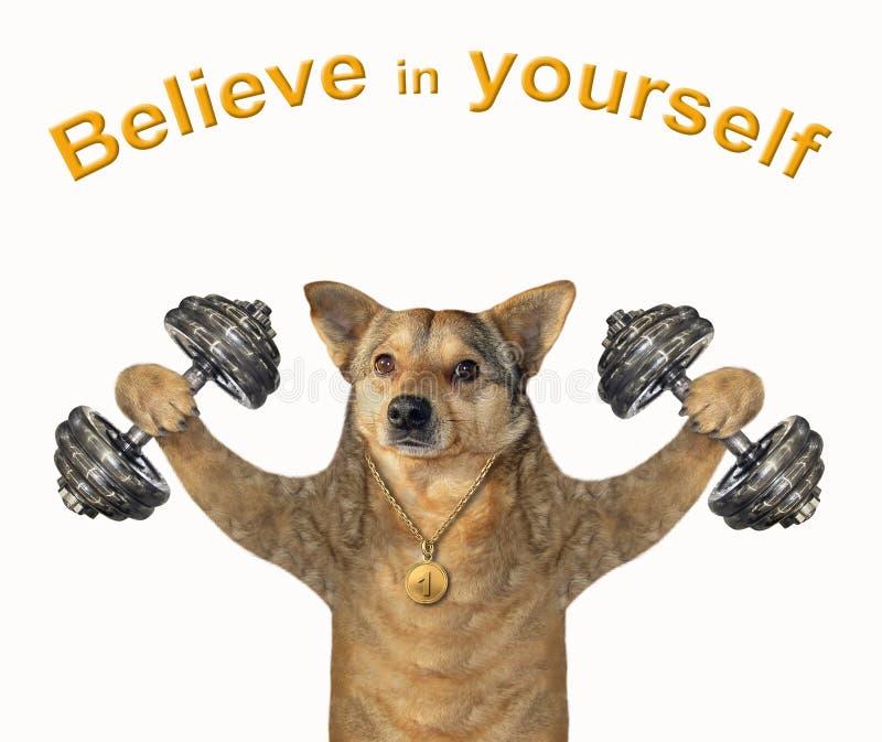 狗运动员举哑铃 图库摄影