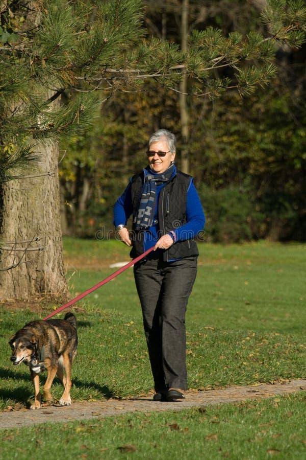 狗高级走的妇女 图库摄影