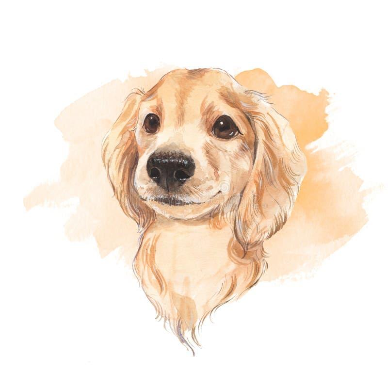 狗 额嘴装饰飞行例证图象其纸部分燕子水彩 库存例证