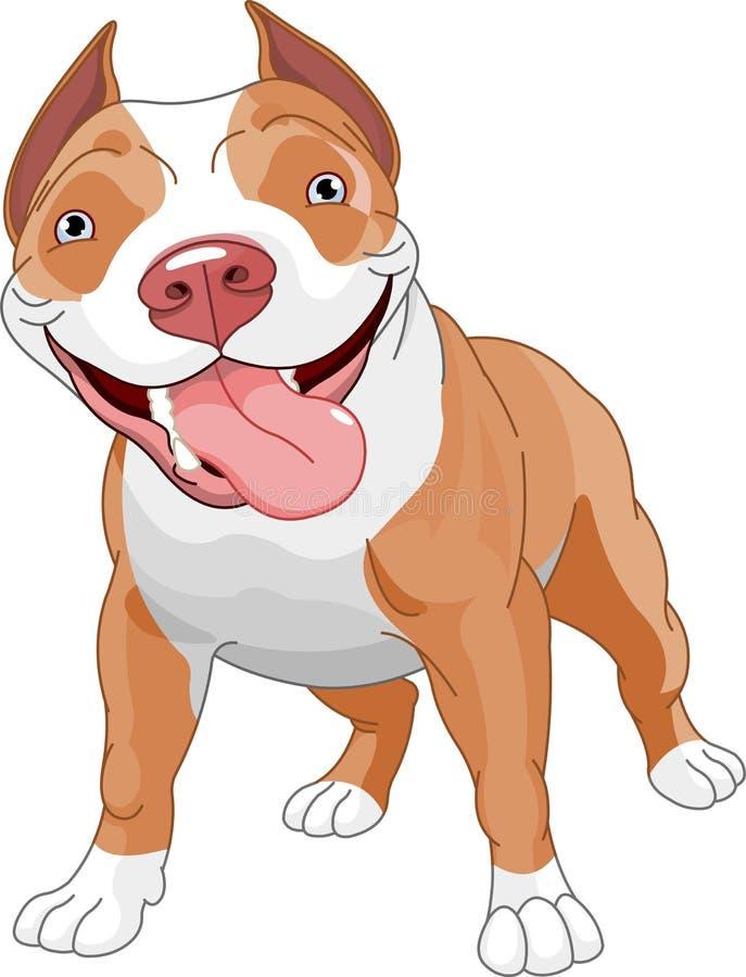 狗pitbull 皇族释放例证