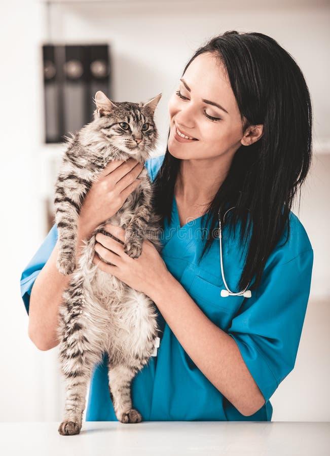 狩医诊所的年轻兽医妇女 图库摄影