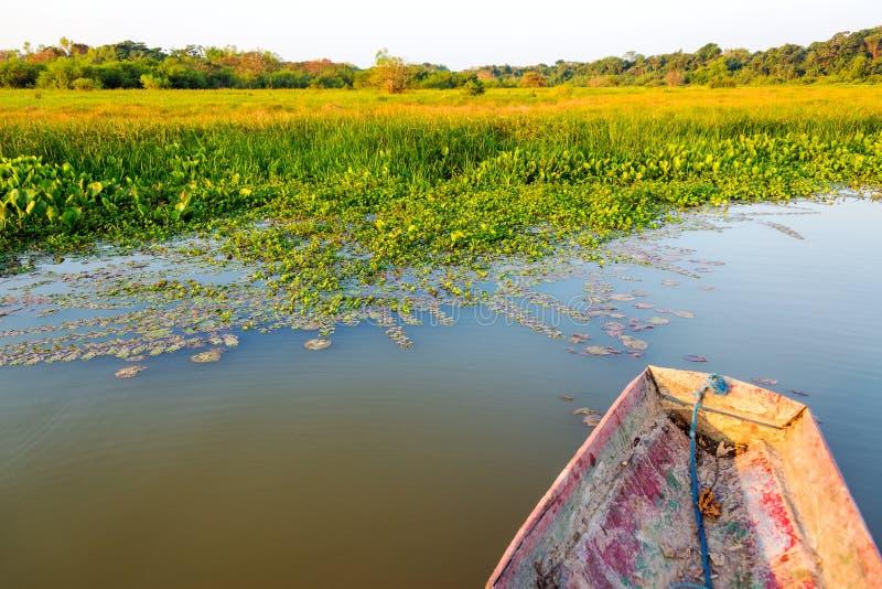 独木舟和湖岸 库存图片