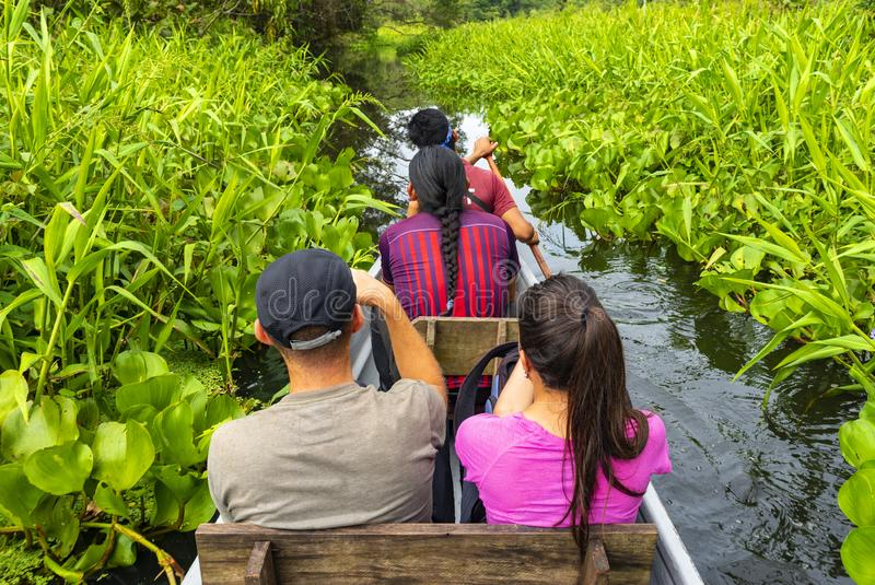 独木舟的游人在亚马逊雨林 免版税图库摄影