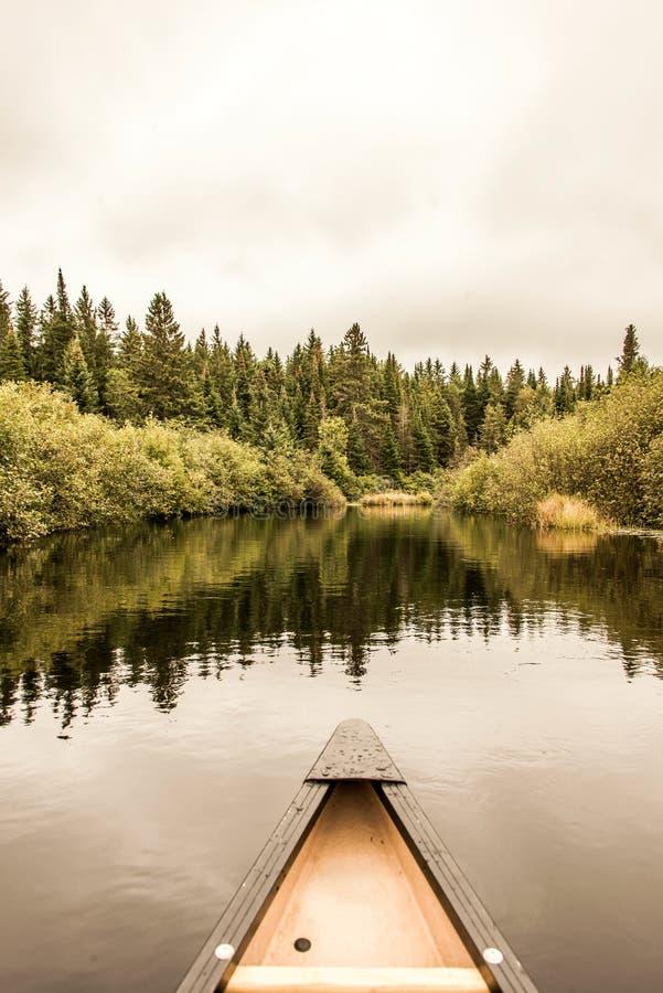 独木舟鼻子Calm平安的相当湖阿尔根金族公园,安大略加拿大树反射海岸线杉树森林岸线 库存照片