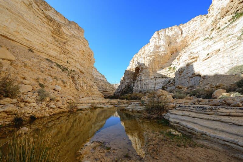 独特的峡谷在Neqev沙漠 图库摄影