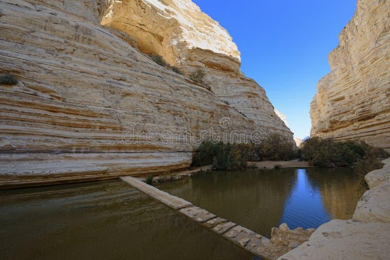 独特的峡谷在Neqev沙漠 免版税图库摄影