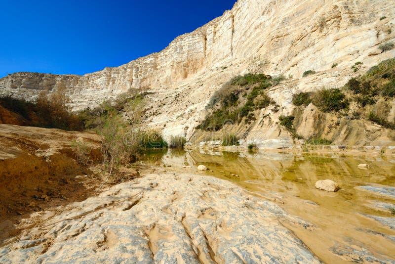 独特的峡谷在Neqev沙漠 免版税库存图片