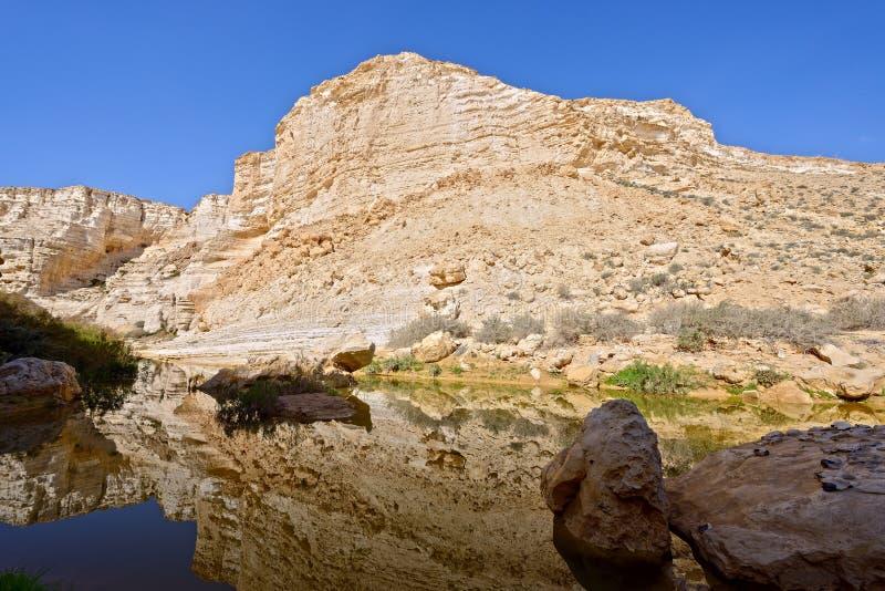 独特的峡谷在Neqev沙漠 免版税库存照片