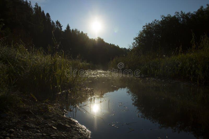 狭窄的河在黎明 免版税库存照片