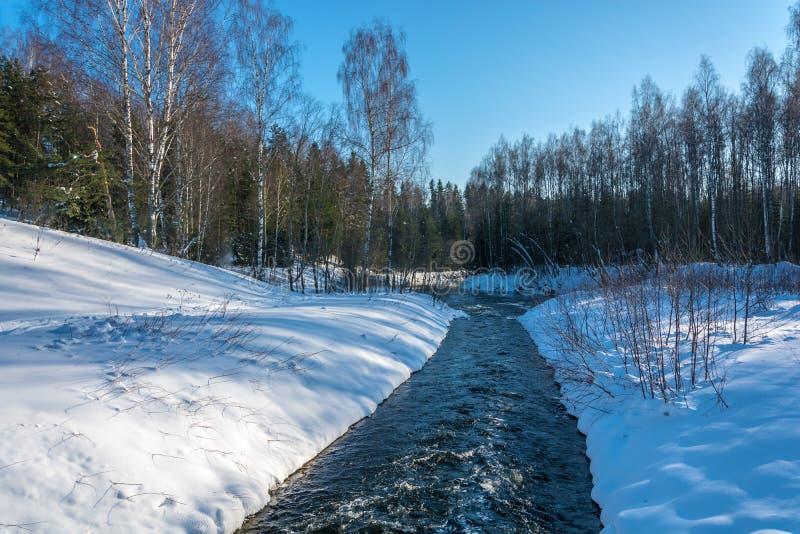 狭窄的白浪河在雪银行中 库存照片