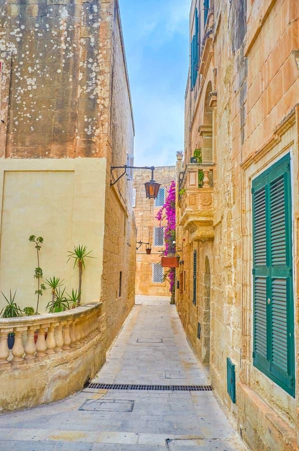 狭窄的车道在姆迪纳,马耳他 免版税库存照片