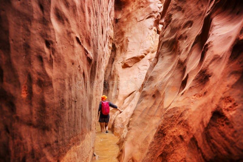 狭缝型峡谷 库存图片