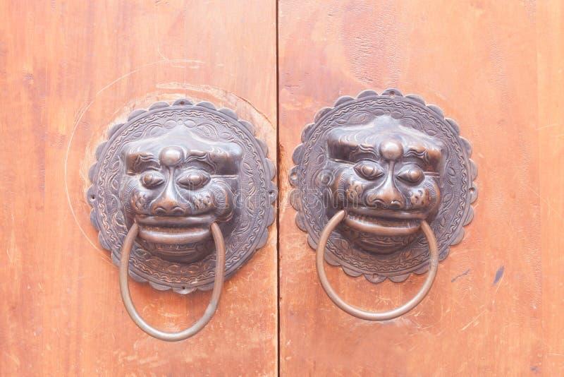 狮子在木门装门 库存图片