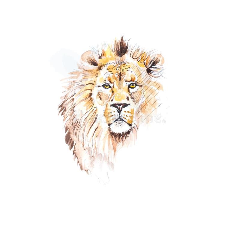 狮子头详细的水彩绘画以传染媒介格式 库存例证