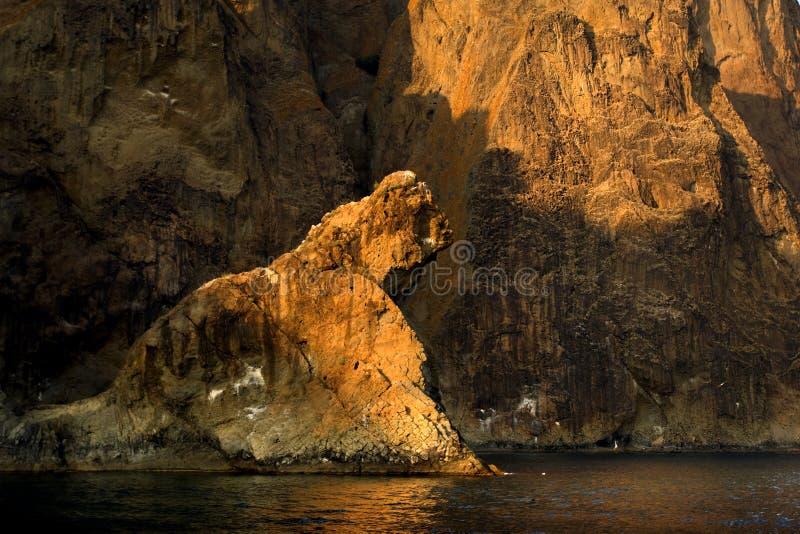 狮子岩石 库存图片