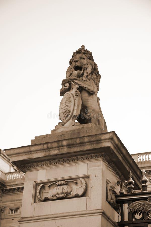 狮子法规场面 免版税库存图片