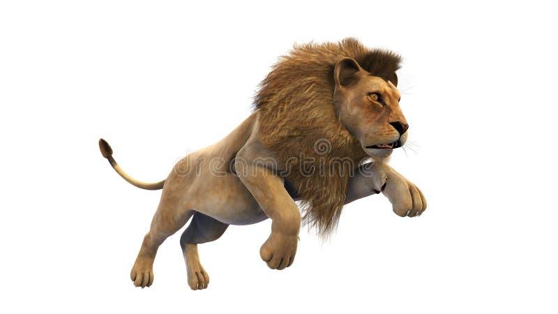 狮子赛跑,在白色背景的野生动物 皇族释放例证
