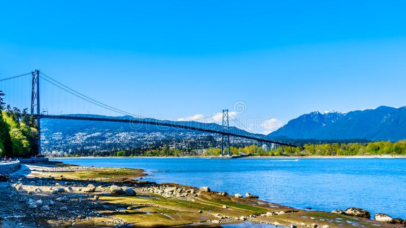 狮子门桥梁或者在温哥华首先使桥梁狭窄,BC,加拿大 图库摄影
