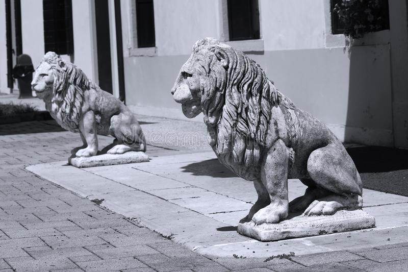 狮子雕塑在意大利庭院里 库存照片