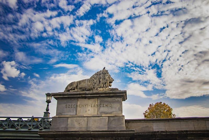 狮子雕象在塞切尼链桥塞切尼Lanchid在布达佩斯布达佩斯,匈牙利 库存图片
