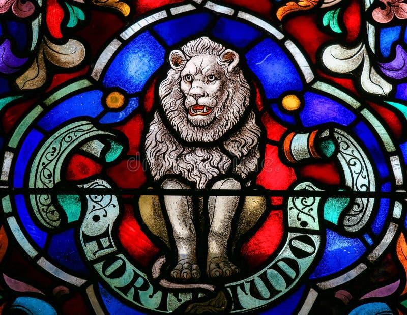 狮子,力量的标志 库存照片