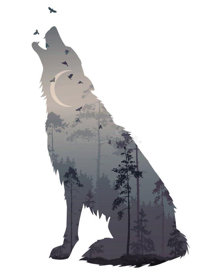 狼夜 向量例证