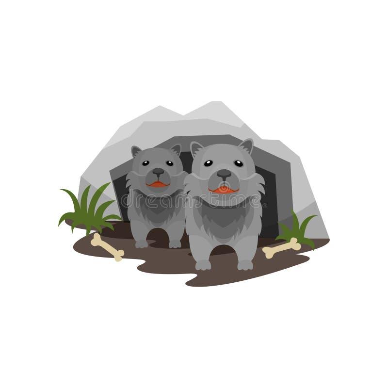 狼穴,在石洞的小崽导航在白色背景的例证 皇族释放例证