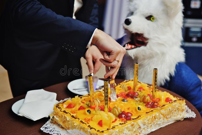 狼面具党时间,与蜡烛的黄蛋糕 免版税库存图片
