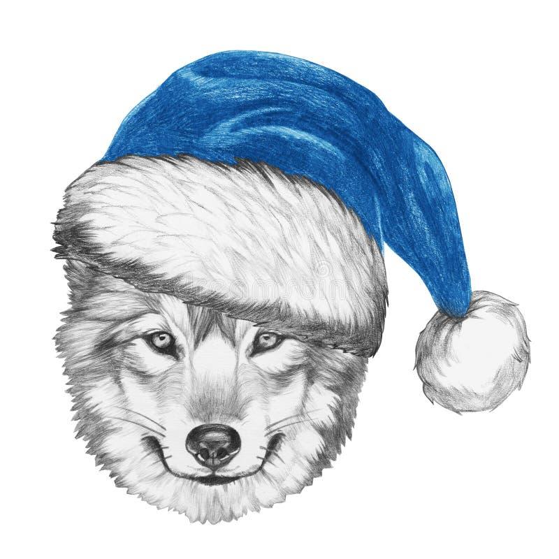 狼画象与圣诞老人帽子的 库存例证