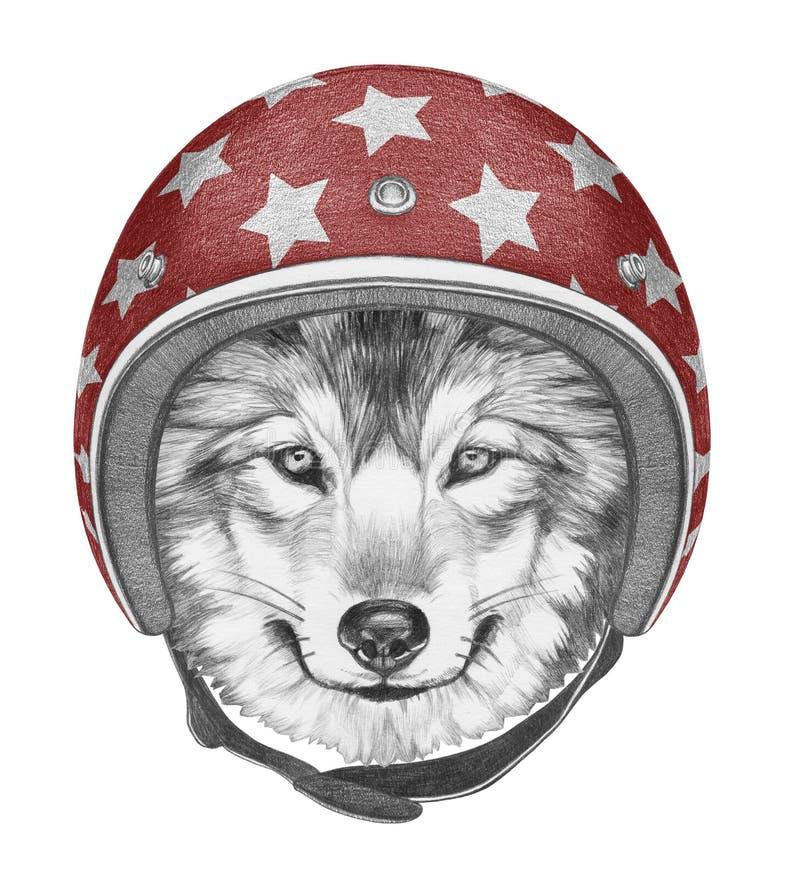 狼画象与盔甲的 向量例证
