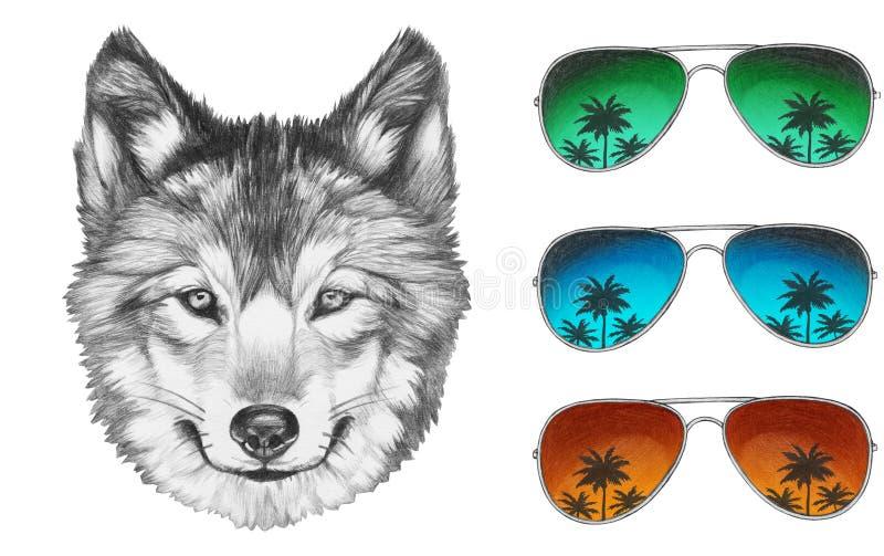 狼画象与镜子太阳镜的 向量例证