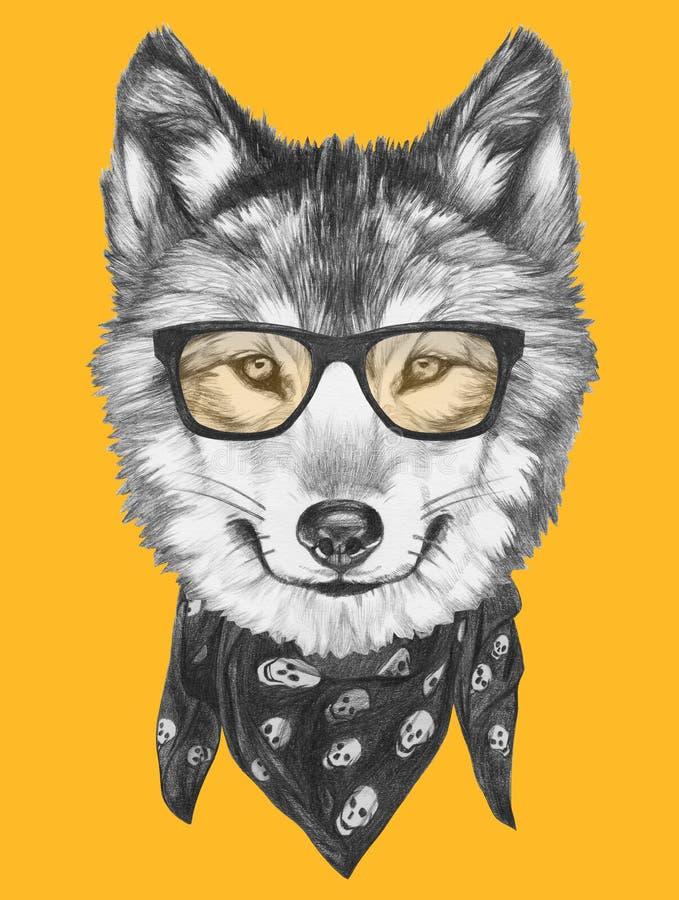 狼画象与玻璃和围巾的 库存例证