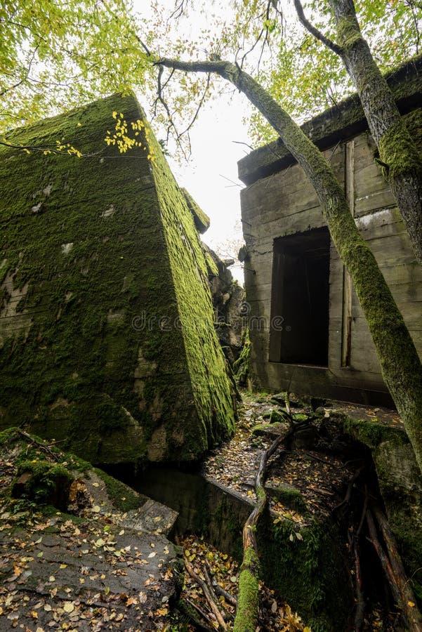 狼` s穴,阿道夫・希特勒` s地堡,波兰 第一个东部前面军总部,二战 炸毁的复合体,放弃 免版税图库摄影