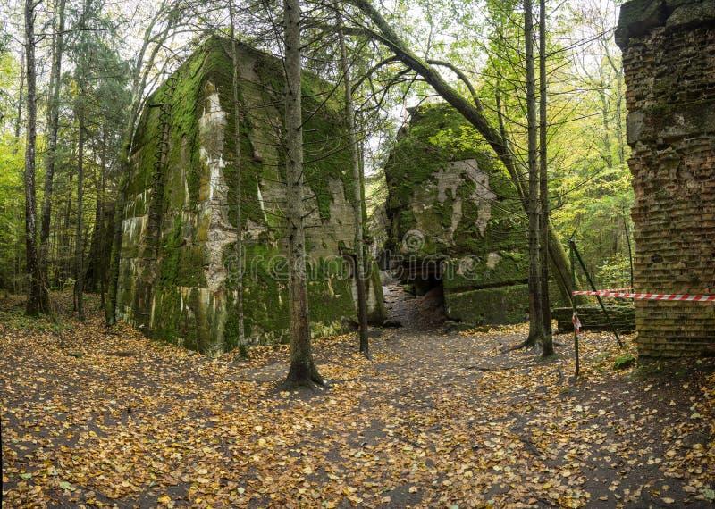 狼` s穴,阿道夫・希特勒` s地堡,波兰 第一个东部前面军总部,二战 炸毁的复合体,放弃 库存图片
