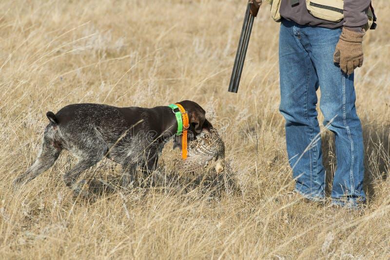 猎人和他的狗 库存图片