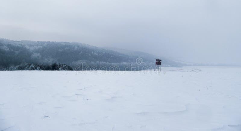 猎人安置由多雪的自然围拢 免版税图库摄影
