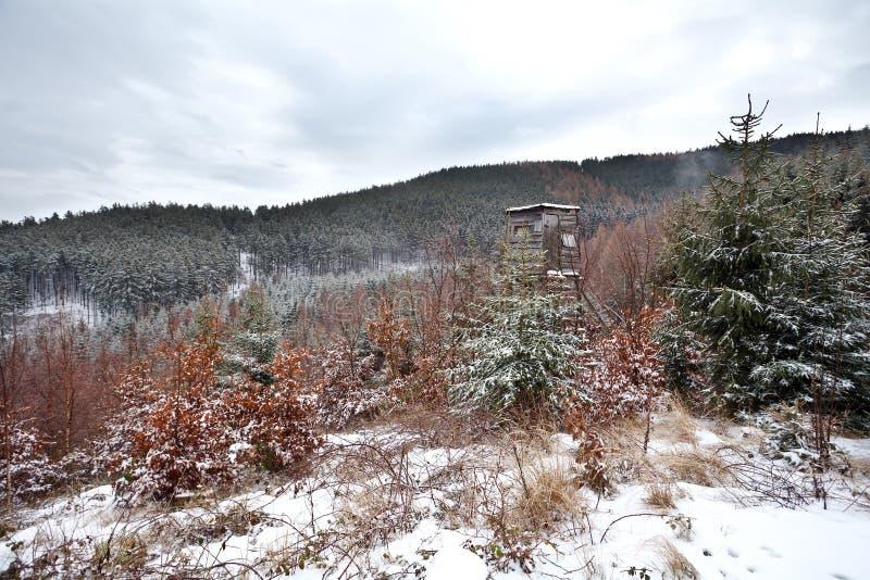 猎人木匈奴在冬天森林里 图库摄影