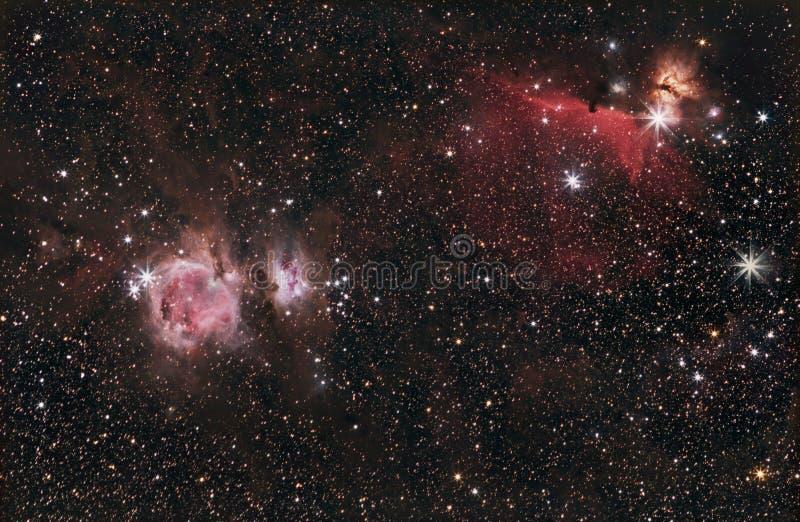 猎户星座、HorseHead &火焰星云 库存照片