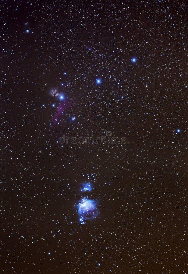 猎户星座宽领域视图 免版税库存图片